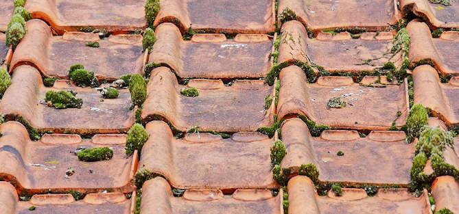 demoussage toiture La Courneuve